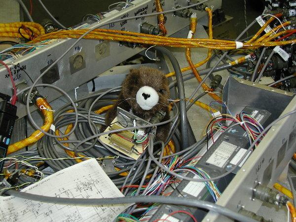 http://arcade.gsfc.nasa.gov/images/marmot_and_heater.jpg