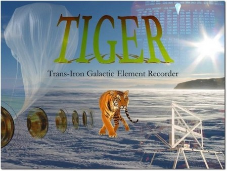 TIGERscape